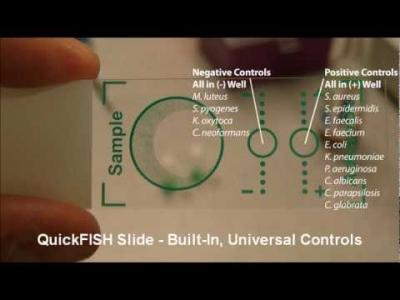 QuickFISH - Introduction to 20 Min. Pathogen ID
