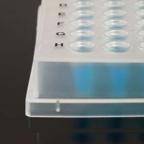 Amplify Fully-Skirted 96-Well PCR Plates