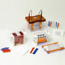 Gel Tank and Blotting unit Vertical Clarit-E Mini Dual 10x10cm for protein electrophoresis and blotting in polyacrylamide gels with caster