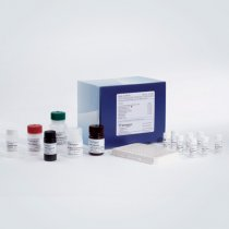 Neutrophil gelatinase-associated lipocalin (NGAL) ELISA kit (human)  BioPorto 96 wells. For quantitative measure of total NGAL levels in human samples