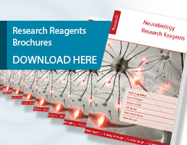 Research_Reagents_Brochures